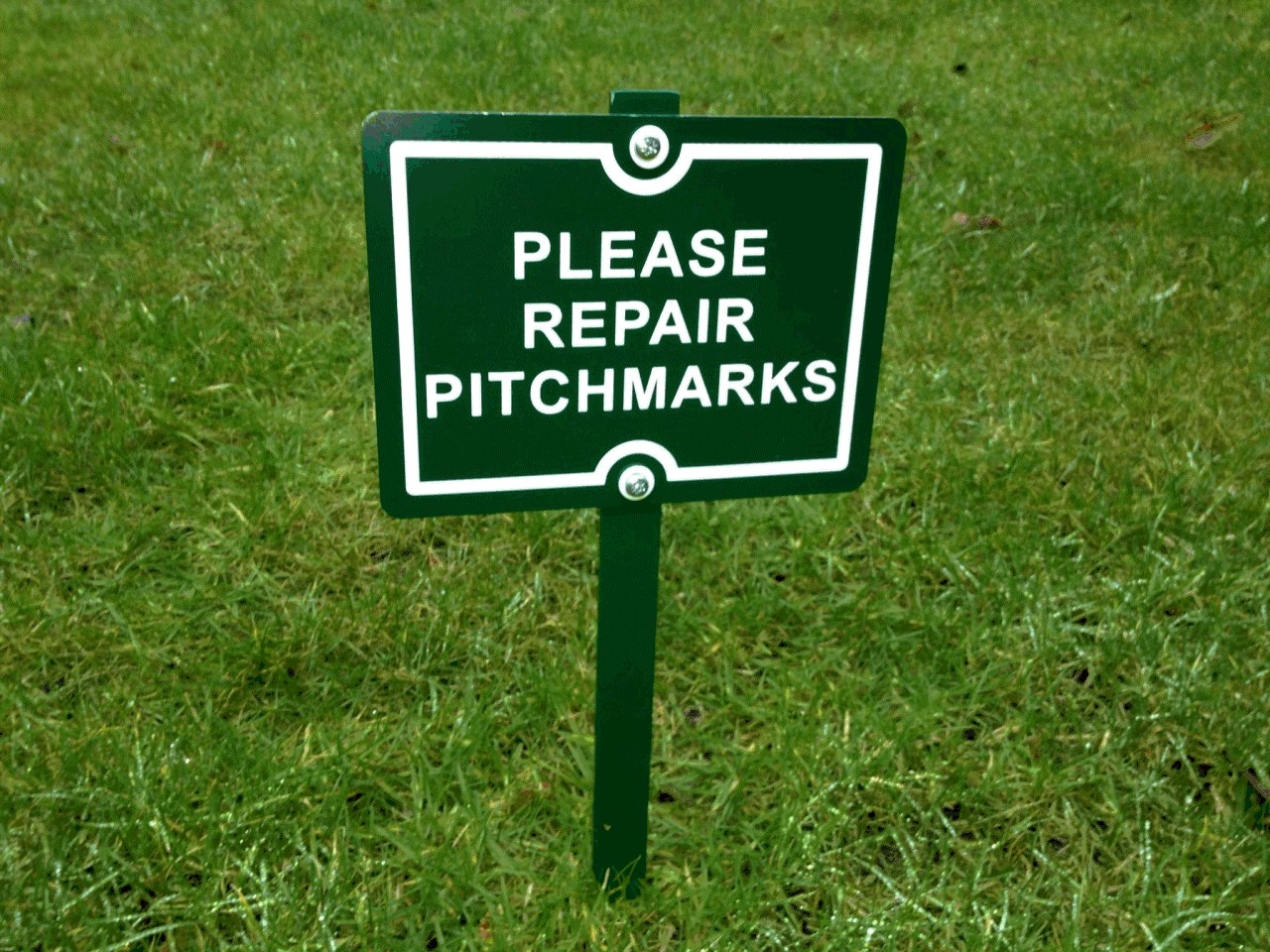 Please Repair Pitchmarks
